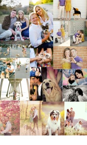 Dogs and Engagement Photos